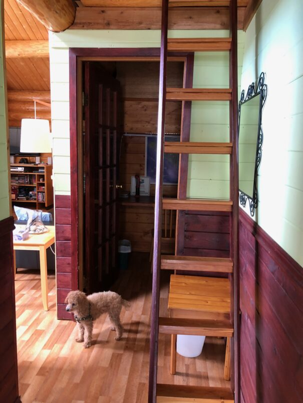 Loft accessible by ladder